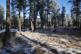 TBD Tin Cup Trail - Photo 3