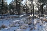 TBD Tin Cup Trail - Photo 7