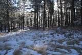 TBD Tin Cup Trail - Photo 8