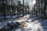 TBD Tin Cup Trail - Photo 9
