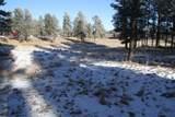 TBD Tin Cup Trail - Photo 14