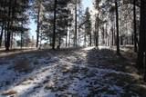 TBD Tin Cup Trail - Photo 15