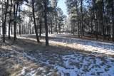 TBD Tin Cup Trail - Photo 16