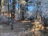 12741 Prairie Creek Road - Photo 16