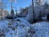12741 Prairie Creek Road - Photo 18