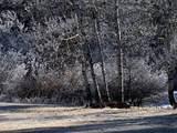 12741 Prairie Creek Road - Photo 2