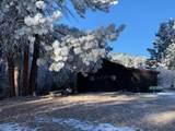 12741 Prairie Creek Road - Photo 23