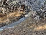 12741 Prairie Creek Road - Photo 9