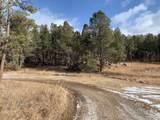 25866 Carroll Creek Road - Photo 10