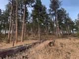 TBD Norris Peak Road - Photo 2