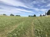 3828 Twisted Oak Road - Photo 5