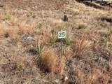 2105 Bison Pass - Photo 1