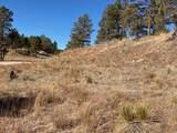 2105 Bison Pass - Photo 11