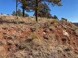 2105 Bison Pass - Photo 2