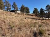 2105 Bison Pass - Photo 6