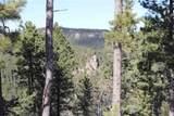 Spokane Lode #1 Ida Grey Road - Photo 10