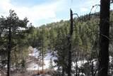 Spokane Lode #1 Ida Grey Road - Photo 5