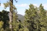 Spokane Lode #1 Ida Grey Road - Photo 8