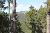 Spokane Lode #1 Ida Grey Road - Photo 9