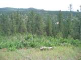 TBD Tutty Trail - Photo 4