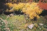 TBD Tutty Trail - Photo 8
