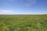 12547 Bighorn Road - Photo 22