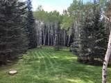 21641 Custer Trail - Photo 12