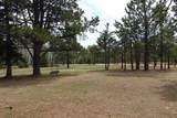 21641 Custer Trail - Photo 13