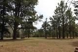 21641 Custer Trail - Photo 14