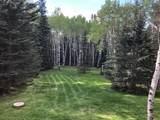 21641 Custer Trail - Photo 30