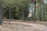 21641 Custer Trail - Photo 8