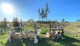 27814 Forest Road - Photo 7