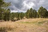 LOT 4B Saddle Ridge Road - Photo 6