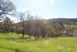 LOT 8 Blue Ridge Loop - Photo 1