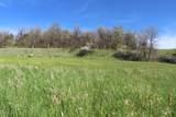 LOT 8 Blue Ridge Loop - Photo 7