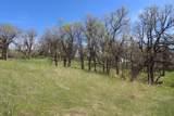 LOT 8 Blue Ridge Loop - Photo 9