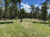 TBD Ghost Canyon Road - Photo 16