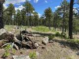 TBD Ghost Canyon Road - Photo 21