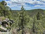 TBD Ghost Canyon Road - Photo 22