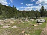 TBD Ghost Canyon Road - Photo 27