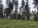 Lot 1 Eagle Ridge - Photo 10