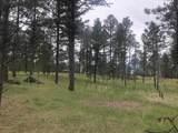 Lot 1 Eagle Ridge - Photo 12