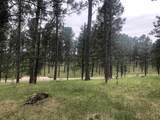 Lot 1 Eagle Ridge - Photo 13