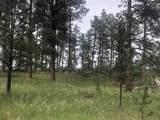 Lot 1 Eagle Ridge - Photo 21