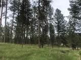 Lot 1 Eagle Ridge - Photo 4