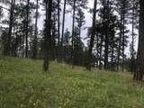 Lot 1 Eagle Ridge - Photo 5