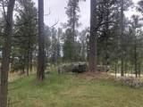 Lot 1 Eagle Ridge - Photo 8