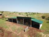 27288 Wind Cave Road - Photo 9