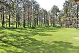 25350 Deer Meadow Road - Photo 4