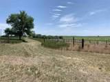 14194 Oral Road - Photo 21